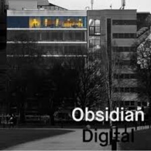 Vækst obsidian digital podcast